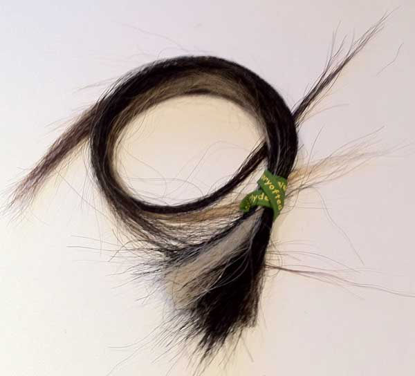 Ted Cydesdale tail hair